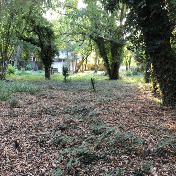 SAINT-REMY-LES-CHEVREUSES Les terrains